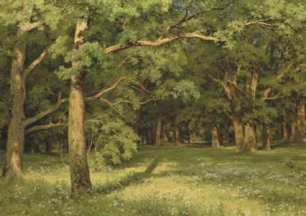 Shishkin, Ivan Ivanovich: The Forest Clearing. Fine Art Print/Poster. Sizes: A4/A3/A2/A1 (00562)